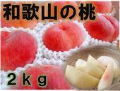 ■【秀品】和歌山ブランド白桃約2kg![8月発送分]ギフト、贈答にも!