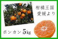 柑橘王国愛媛産柑橘【ポンカン】約5kg~まごころ手選り手詰め