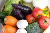 【オーガニック】シェフの目線「旬野菜食べ切りハーフセット」年間パスポート