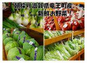 滋賀県竜王町産のお野菜とお米が届く定期便(隔月発送)