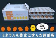 【2週間ごとに届く新鮮卵!!】ミネラルを豊富に含んだ越前赤玉子27個入り+卵割れ補償3個(計30個) ×4回