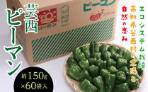エコシステム栽培 芸西ピーマン 約150g×60袋