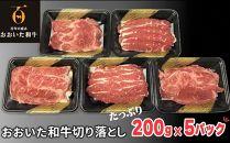 【数量限定】おおいた和牛 切り落とし1kg(200g×5パック)