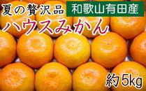 【夏の贅沢品】有田産のハウスみかん赤秀品約5kg