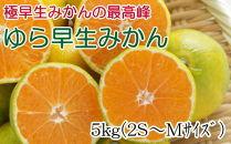 【極早生みかんの逸品】有田産ゆら早生みかん約5kg