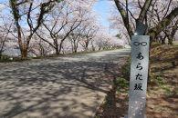 【あわら市】JTBふるぽWEB旅行クーポン(3,000点分)