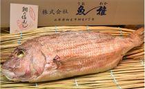播州赤穂相生名産鯛の塩むし 1尾
