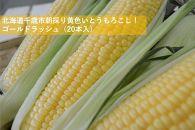 北海道千歳市朝採り黄色いとうもろこし!ゴールドラッシュ(20本入)
