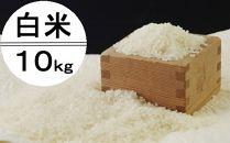 OO005 令和2年産大岸の新米(白米)10kg