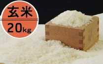 OO008 令和2年産大岸の新米(玄米)20kg