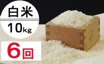 OO011 令和2年産大岸の新米(白米)10kg【6回定期便】