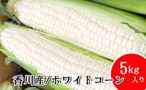 まるでフルーツと名高い香川産のホワイトコーン!限定300セット!【先行予約・2021年6月上旬より順次発送】