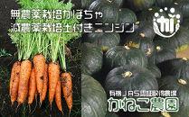 有機基準栽培かぼちゃ・減農薬栽培土付きニンジン セット【かねこ農園】