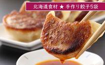 BB004北海道の食材たっぷり!手作り餃子5袋セット<スリーエス>【4200pt】