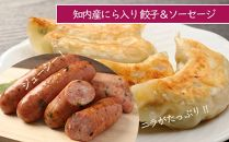 BB006知内産にら入り餃子&ソーセージセット<スリーエス>【5400pt】