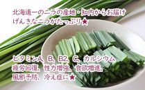 BB009味付きジンギスカン☆知内産ニラ入り!〈4800pt〉