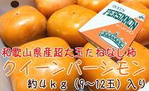 特大たねなし柿 クイーンパーシモン 4L~6Lサイズ 約4kg