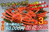 活限定)加能ガニ3尾 食べ納めセット