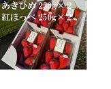 いちご農園ミライバナ【ボリューム満点】朝摘み あきひめ&紅ほっぺ 詰合せ 250g×4P