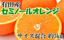 ■和歌山有田産セミノールオレンジ約5kg(サイズ混合)