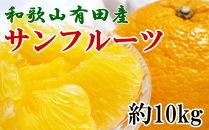 ★受付終了★和歌山有田産サンフルーツ約10kg(M~3Lサイズおまかせ)