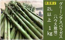 グリーンアスパラガス(ハウス栽培)2L以上1Kg 数量限定 30箱