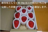 いちご農園ミライバナ【贈答用】完熟・朝摘み 大玉紅ほっぺ 400g