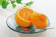 【2021年3月上旬以降出荷】太陽の恵みがたっぷりと注がれた春の柑橘 デコ娘(不知火) 約3kg〈赤秀〉
