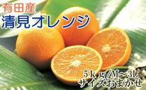 ■[厳選]有田産清見オレンジ約5kg(サイズおまかせ・秀品)