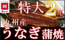 FY02-13九州産うなぎ蒲焼特大2尾(1尾あたり200~235g)