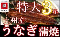 FY03-18九州産うなぎ蒲焼特大3尾(1尾あたり200~235g)