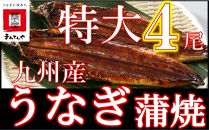 FY04-23九州産うなぎ蒲焼特大4尾(1尾あたり200~235g)