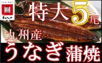 FY05-30九州産うなぎ蒲焼特大5尾(1尾あたり200~235g)
