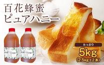 ピュアハニー【AR5kg(AR2.5kg×2)】大容量でたっぷり使えるコクのある純粋蜂蜜