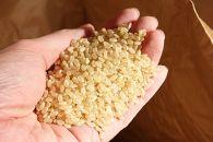 三百年続く農家の有機特別栽培コシヒカリ(【玄米】5kg)