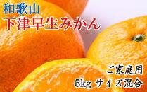 【産直】下津早生みかん5kgご家庭用向け(サイズ混合)
