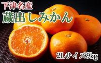 【産直】下津蔵出しみかん9kg(2Lサイズ)