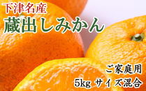 【産直】下津蔵出しみかん5kgご家庭用向け(サイズ混合)