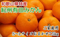 [厳選]紀州有田みかん7.5kgご家庭用(S~Lサイズおまかせ)