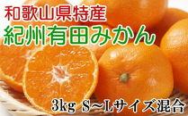 [厳選]紀州有田みかん3kg(S~Lサイズ混合・秀品)