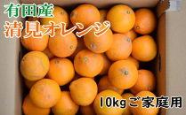 ■【濃厚】有田産清見オレンジ約10kg(M~3Lサイズおまかせ)ご家庭用【2021年2月~発送】