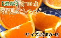 【濃厚】有田産清見オレンジ約10kg(サイズおまかせ・秀品)
