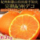 果肉プリプリ♪ 完熟紀州デコ(不知火) 約3kg