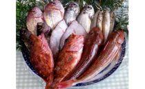 豊浜産地魚