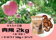 【フレッシュ果実&セミドライフルーツシリーズ】山梨県産すももの貴陽2kg(8~9玉)&セミドライ