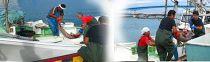 沖縄県産鮫肝油 深海の雫