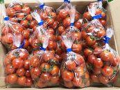 ミニトマト詰合せ約2Kg農園直送新鮮