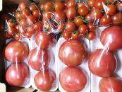 トマトミニトマト詰合せ約3Kg直送セット