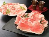 <宮崎県産豚切落し3kg(500g×6パック)>