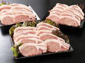 <贅沢宮崎県産豚肉ロース100gカット30枚>